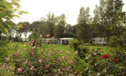 Camping Hazehof